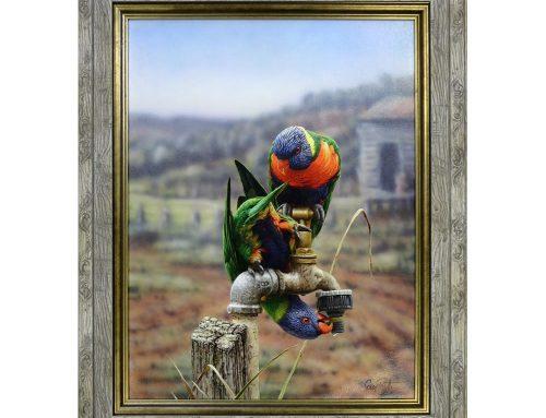 Parrots Canvas