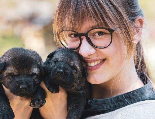 Framing your pet photos